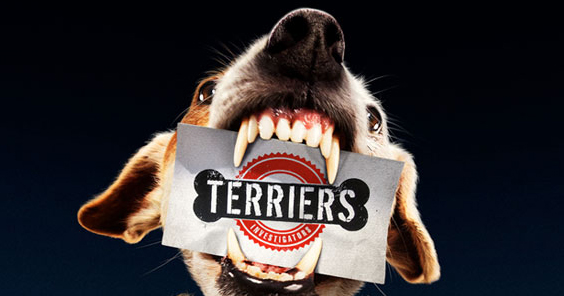 Terriers 1.11 Sins of the Past Review